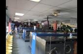 Inside of Store